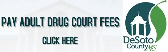 ADULT DRUG COURT FEES (1)